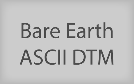 Bare Earth ASCII DTM